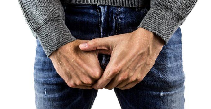 fonctionnement erection
